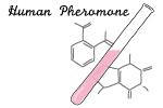 ヒトフェロモン